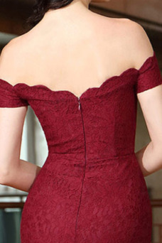Robe de soirée Sirène Tissu Dentelle Taille Naturel Zip Hiver Manche Courte